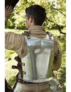Back Plate Warrior