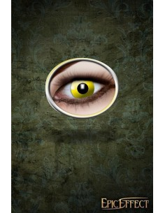 Yellow Eyes - Contact...