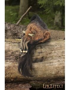 Dwarf Shrunken head