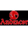 Andracor
